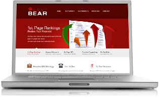 Ugly Bear - SEO Services & Internet Marketing
